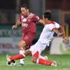 """Serie B: pareggio tra Reggina e Bari, al """"Granillo"""" è 0-0"""