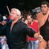 "WWE: Andrè Roussimoff, il wrestler ""Giant"""