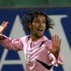 Calciomercato Palermo: suggestione Amauri, ipotesi Quaison