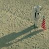 Un astronauta sulle spiagge di Miami