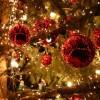 Tanti auguri di un felice Natale 2014 dalla redazione di SportCafe24.com