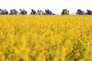 Giro di Italia 2013 Sesta Tappa