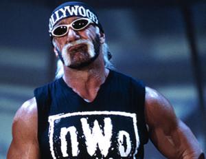Hulk Hogan, WWF, WWE, WCW,