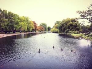 Londra: i parchi