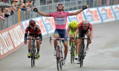 Matthews, Giro d'Italia