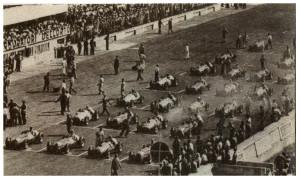 La griglia di partenza del Gp d'Italia del 1950, disputato a Monza e valevole, per la prima volta, per il Campionato Mondiale di Formula 1