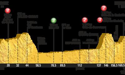 L'altimetria della quattordicesima tappa del Tour de France